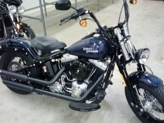 2008 Harley Davidson Crossbones Springer Softail photo