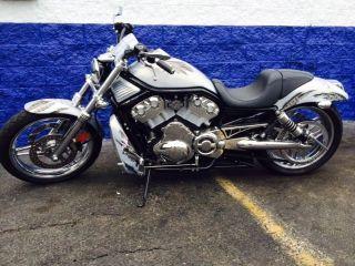 2005 Harley Davidson Vrod photo