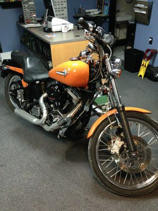 2003 Softail Chopper photo