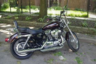 2006 Harley 1200 Custom Sportster photo