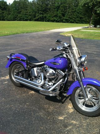 2005 Harley Davidson Fatboy Flstfi photo