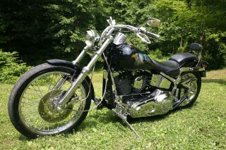 Harley - Davidson Softail Custom 1996 photo