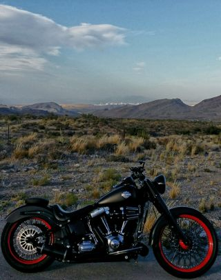 2012 Harley - Davidson Softail Slim Fls103 photo