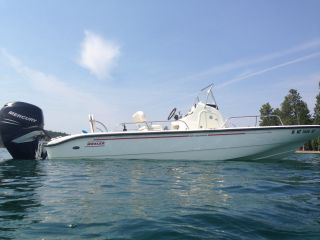 2006 Boston Whaler Dauntless photo