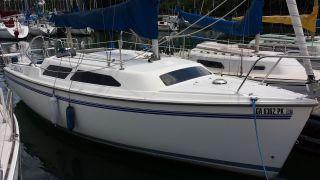 2001 Catalina Yachts 250 photo