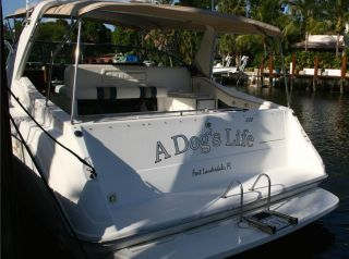 1993 Sea Ray Sundancer 370 photo