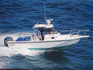 1996 Boston Whaler Offahore photo